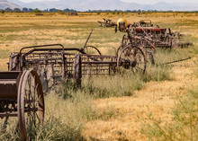 Many Vintage Rusted Farm Implements In Field