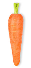 Baby Carrot Isolated On White ...