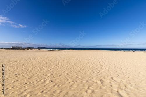Deurstickers Canarische Eilanden Desert Sand Dunes with a view to the Ocean in Fuerteventura, Canary Islands, Spain