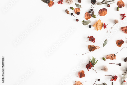 Aluminium Prints Autumn Autumn composition. Frame made of eucalyptus branches, rose flowers, dried leaves on white background. Autumn, fall concept. Flat lay, top view, copy space