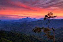 Sunset With Beautiful Sky And Tree In Phu Phaya Pho, Phrae Province, Thailand