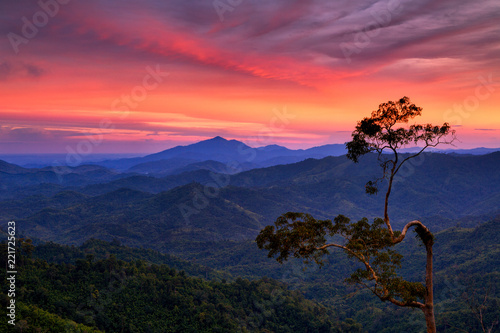 Sunset with beautiful sky and tree in Phu Phaya Pho, Phrae Province, Thailand