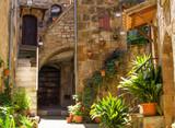 Fototapeta Fototapety na drzwi - Old courtyard in Pitigliano full of plants.