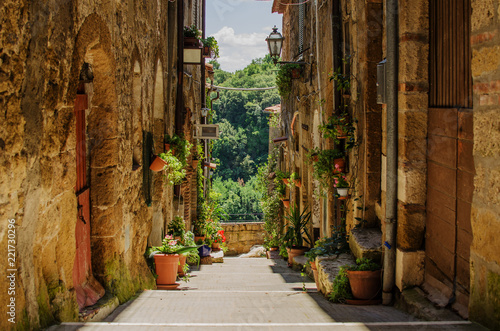 Old street in Pitigliano full of plants