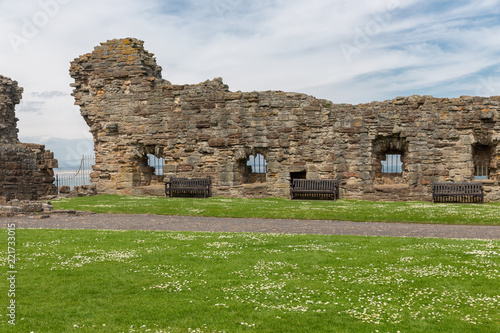Fotografie, Obraz  Old wall and ruin of medieval castle near North Sea in St Andrews, Scotland
