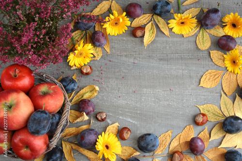 Obraz Jesienne tło, obramowanie z liści, jabłek, śliwek, wrzosu, kasztanów, liści i żółtych kwiatów - fototapety do salonu