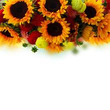 Border Of Dahlia And Sunflower...