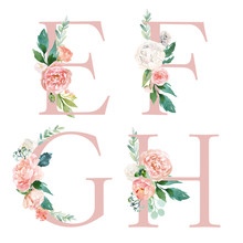 Floral Alphabet Set - Letters E, F, G, H, With Flowers Bouquet Composition. Unique Collection For Wedding Invites Decoration And Many Other Concept Ideas.