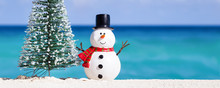 Snowman Toy And Fir Tree At Wh...