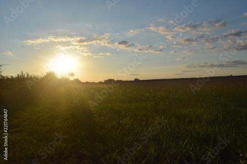 Poster Donkergrijs Field Sunset