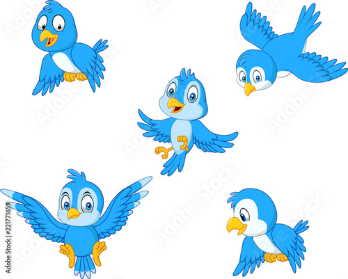 Cartoon blue bird collection set