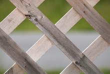 Wooden Lattice Closeup