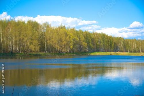 Fototapeta Forest on the shore of the pond in the spring. obraz na płótnie