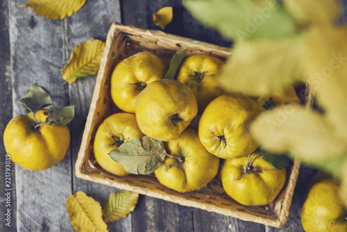 A lot of apple quince  on dark wooden background. top view Wallpaper Mural