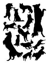Collie Dog Animal Silhouette. ...