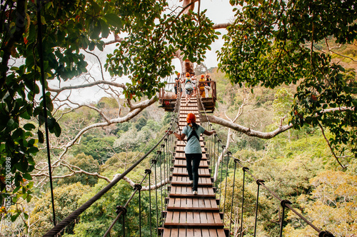 Tourist on zip line elevated wooden bridge over tropical forest canopy in Phuket Wallpaper Mural