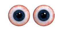 Two Realistic Human Eye Balls ...