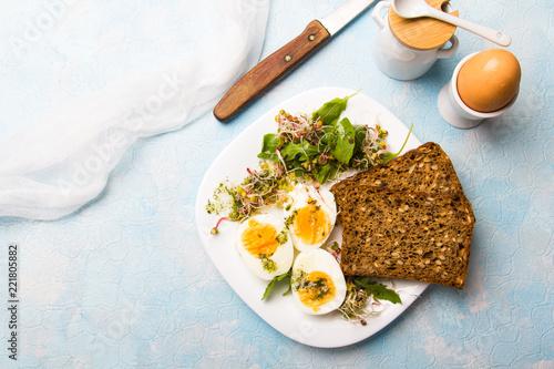 Fototapeta Zdrowe śniadanie - Jajka gotowane na twardo, świeże kiełki rzodkiewki, rukola z sosem ziołowym i kromki pełnoziarnistego ciemnego chleba na błękitnym tle.  obraz