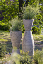 A Tall Round Pot For Plants In The Garden, With Grass Growing Inside The Herb