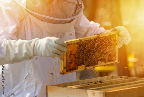 Imker Bienen Wachs und Honigwabe