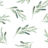 Seamless watercolor olea floral pattern with olive branches and leaves on white background - 221829012