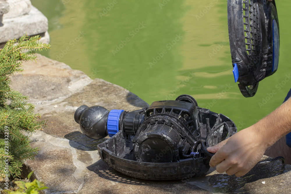 Fototapety, obrazy: Repair of the water pump for a small decorative pond with a fountain
