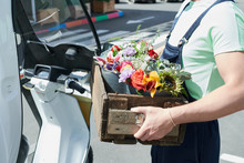 Side View Close Up Of Unrecognizable Worker Holding Wooden Box With Beautiful Flowers While Working On Plantation, Copy Space