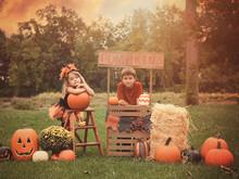 Children Selling Halloween Pum...