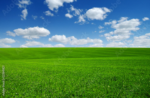 Door stickers Meadow green field and clouds