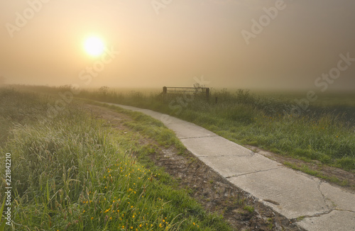 misty summer sunrise over road in countryside