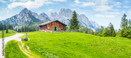 Idyllic mountain scenery with wooden cabin in the Alps in summer Fototapet