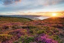 Sunset At Bossington Hill In Somerset