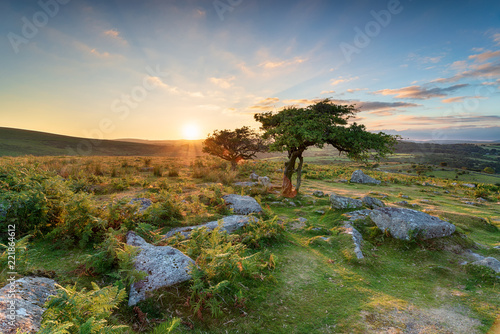 Sunset at Combestone on Dartmoor Lerretsbilde