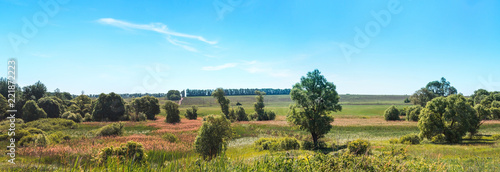 Summer landscape sky, trees, field, bush country scene panorama
