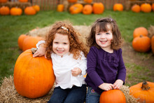 Happy Little Girls Sitting In Pumpkin Patch