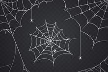 Scary Spider Web Vector Illustration. White Cobweb Silhouette Isolated On Dark Background. Spooky Halloween Decoration Element For Your Design. Eps 10.