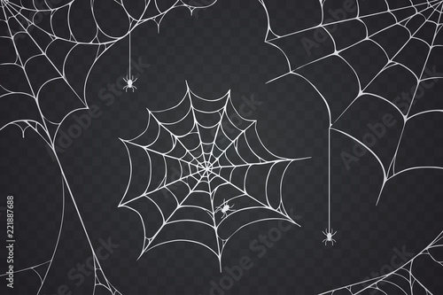 Scary spider web vector illustration Fototapet