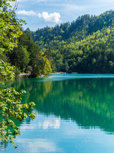 Canvas Prints Green coral Lake with mountains and forests
