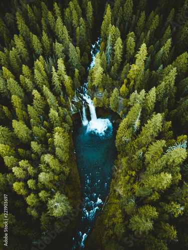 Fotografie, Obraz  Koosah Falls Aerial Shot