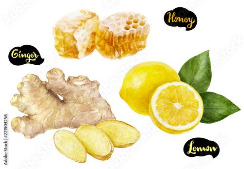 Photo  Ginger honey lemon watercolor hand drawn illustration