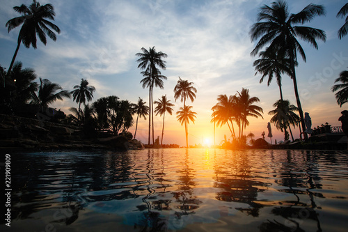 Amazing sunset on coast sea in subtropics with palm silhouettes.