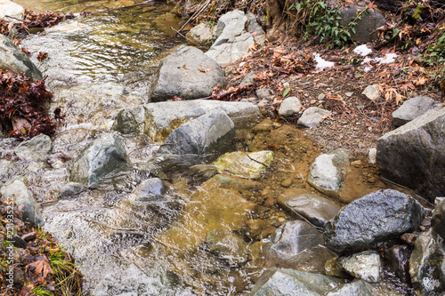 Tuinposter Cyprus Autumn nature with rocks and leaves in Troodos mountains in Cyprus