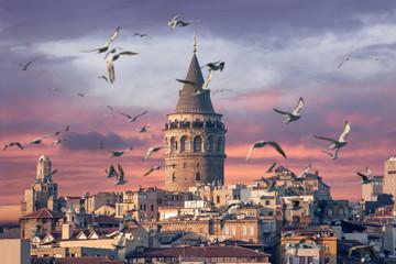 Kula Galata u Istanbulu u Turskoj s galebovima u prvom planu