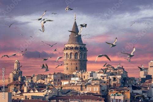 Fotobehang Historisch geb. Galata Tower in Istanbul Turkey with seagulls on the foreground