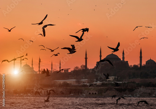 Hagia Sofia and Sultanahmet with seagulls during sunset in Istanbul Turkey Canvas Print