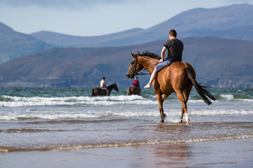 Horse riding on rossbeigh beach in County Kerry,  scenic view of the Dingle pinninsula in the distance