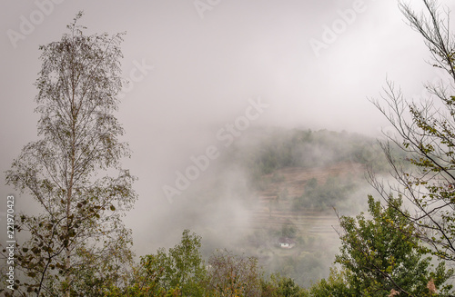 Poster Donkergrijs Autumn in the Carpathian countryside