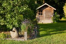 Cabane De Jardin, Bordure Et Potager