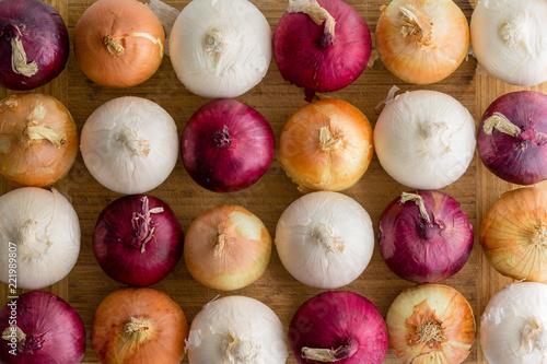 Fototapeta Random arrangement of red, yellow and white onions obraz