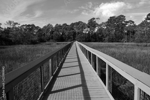 Valokuva  Boardwalk crossing over the marshland of Florida, USA